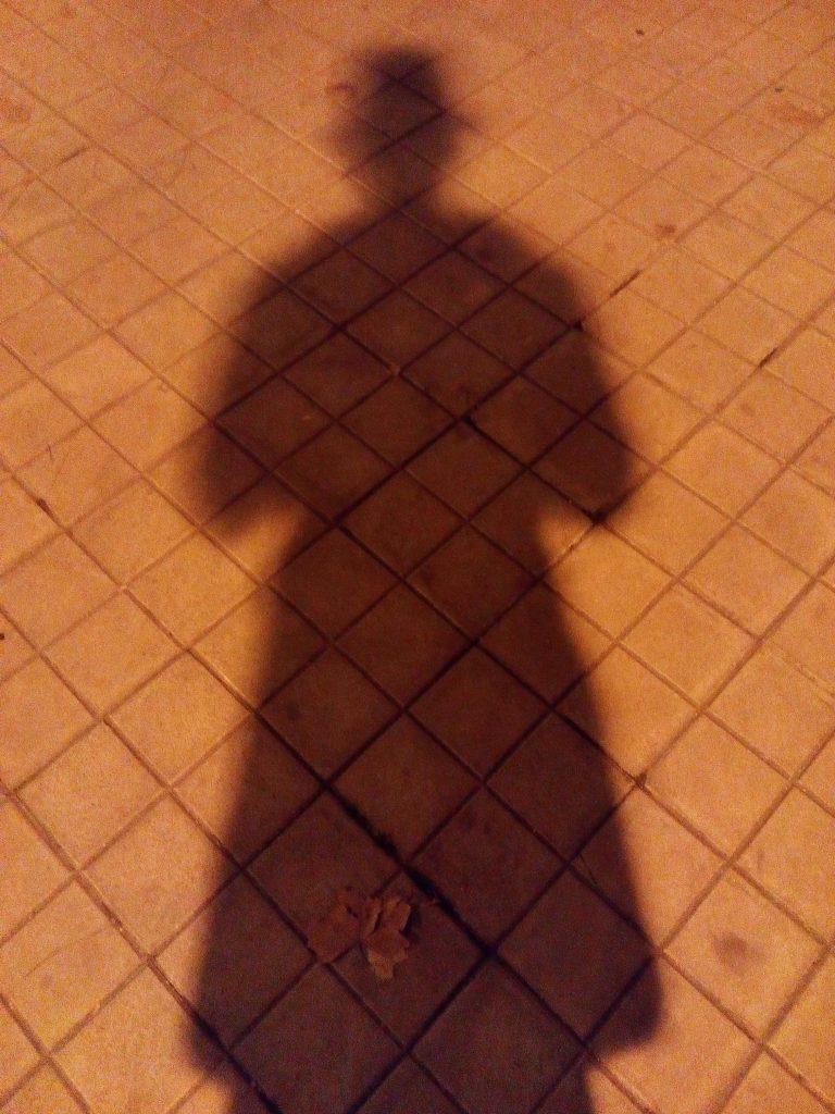 2014 12 13 03.34.38 768x1024 - Gemelo oscuro [VI]